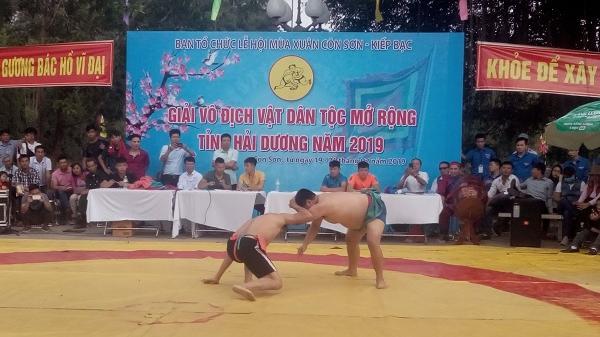 Khai mạc giải vô địch vật dân tộc tỉnh Hải Dương năm 2019