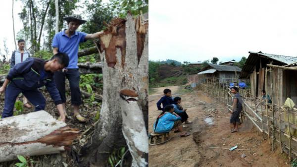 Mường Nhé - Điện Biên: Gian nan ổn định cuộc sống cho người dân