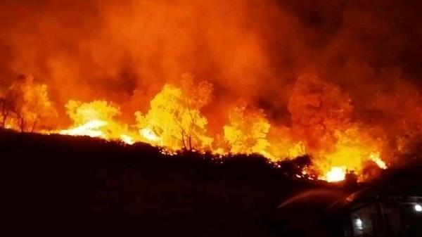 Điện Biên: Hàng trăm người tham gia chữa cháy rừng trong đêm