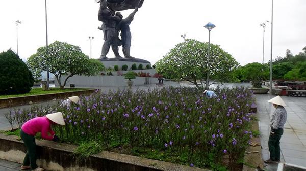 Điện Biên: Hoa đã nở trong các điểm di tích