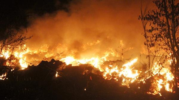 Đồng Nai: Cháy lớn thâu đêm vì đốt rác
