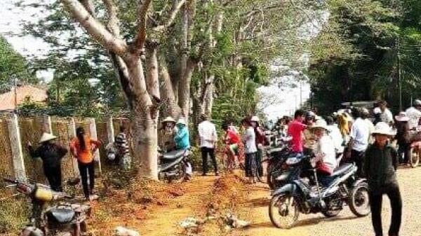 Vụ phát hiện xác chết trong lô cao su ở Long Thành: Bắt khẩn cấp hai đối tượng