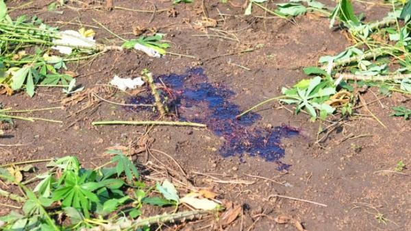 Thông tin mới về vụ nữ sinh lớp 11 bị bắn ở Đồng Nai