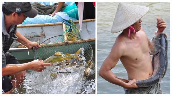 Thủy điện Trị An đóng đập, người dân đổ xô về bắt cá 'khủng'