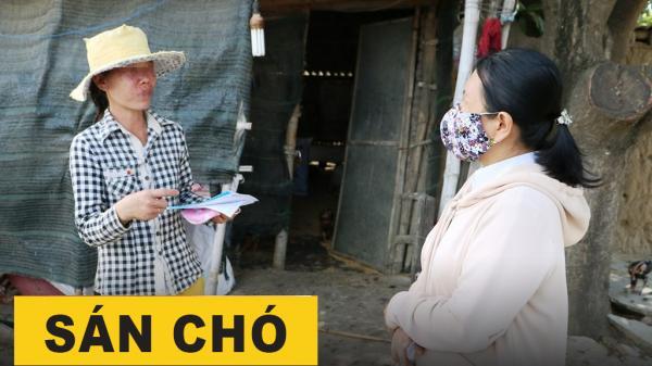 Ninh Thuận: Cảnh báo tình trạng ngứa, mẩn đỏ coi chừng nhiễm giun đũa chó