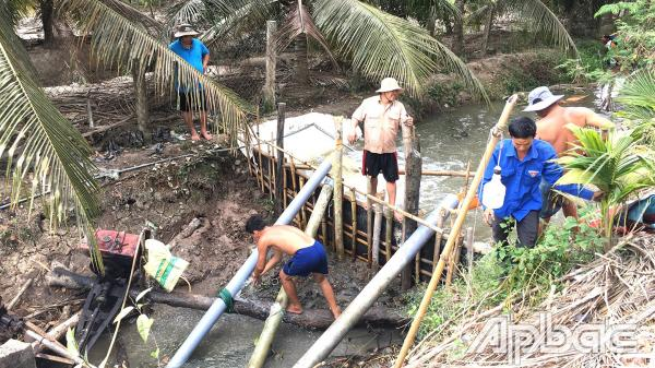 TP. Mỹ Tho: Bơm chuyền nước cứu vườn cây ăn trái