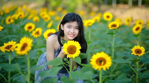 """Ngắm chuẩn tọa độ cánh đồng hoa mặt trời đang """"gây mê"""" giới trẻ ở ngay Đồng Nai chỉ cách Sài Gòn 35km"""