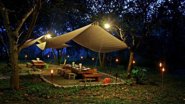 Đến Nam Cát Tiên trải nghiệm ngủ giữa rừng ở Cát Tiên Jungle Lodge