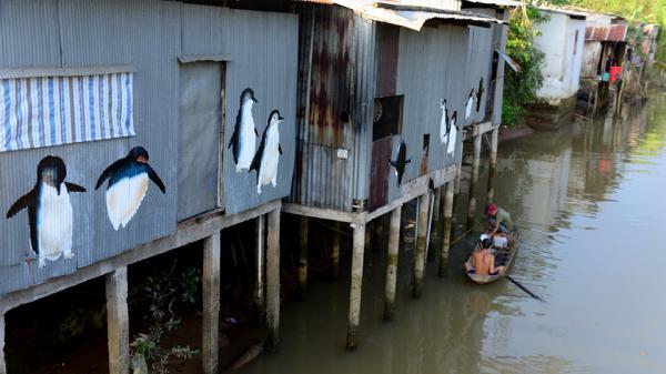 Bích họa bên những ngôi nhà lụp xụp ở Đồng Tháp