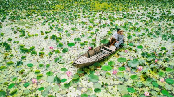 Đồng Tháp mùa này đẹp ngẩn ngơ trong khoảnh khắc tình yêu của cặp đôi Việt kiều