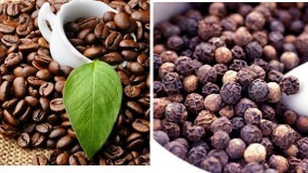 Giá cà phê đồng loạt giảm mạnh, giá tiêu không thay đổi