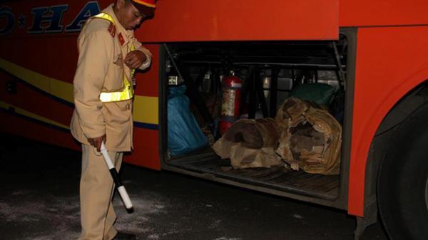 Phát hiện 3 xe khách chở hơn 500 kg pháo lậu
