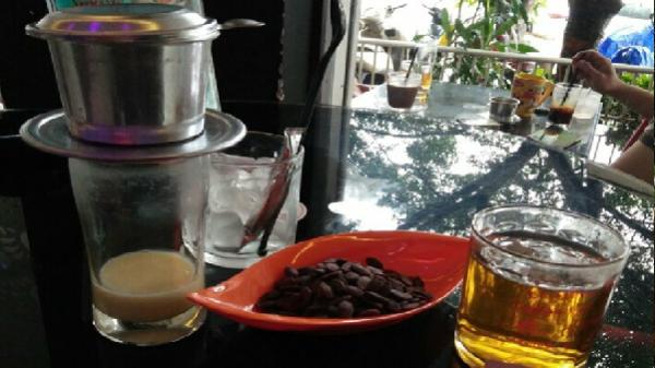 Lên Phố núi thưởng thức cà phê sạch