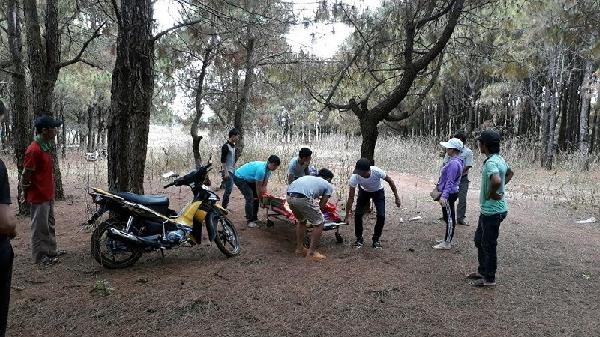 Gia Lai: Nam thanh niên tử vong trong rừng thông, để thư tuyệt mệnh
