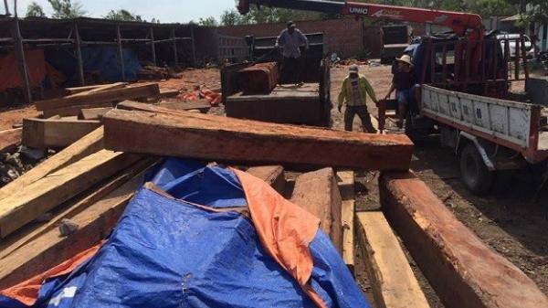 Gia Lai: Đột kích xưởng gỗ, bắt khẩn cấp đối tượng nghi mua bán, tàng trữ gỗ trái phép