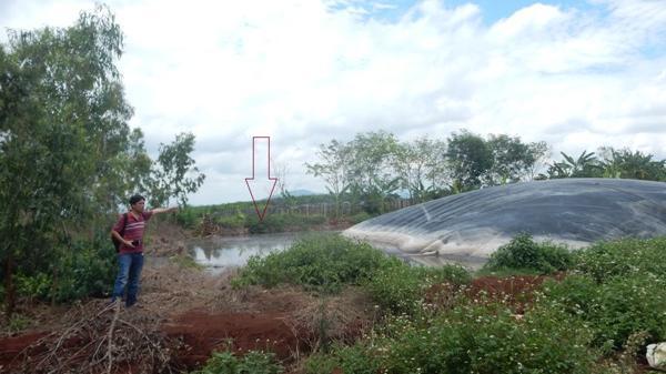 Gia Lai:  5 năm gây ô nhiễm nghiêm trọng chỉ bị phạt 3 triệu đồng
