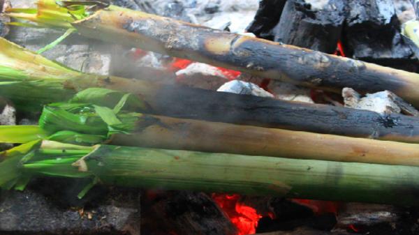 Bò nướng ống - đặc sản phố núi Pleiku