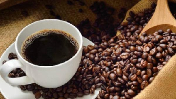 Giá cà phê (26/11) giảm nhẹ, giá tiêu lao dốc ngay từ đầu tuần