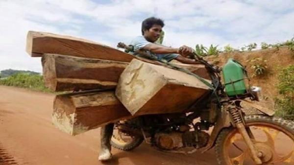 Gia Lai: Truy bắt nhóm lâm tặc chém cán bộ bảo vệ rừng