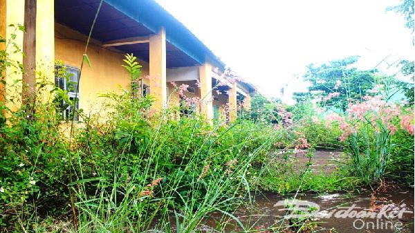 245 phòng học bỏ hoang tại Gia Lai: Lãng phí