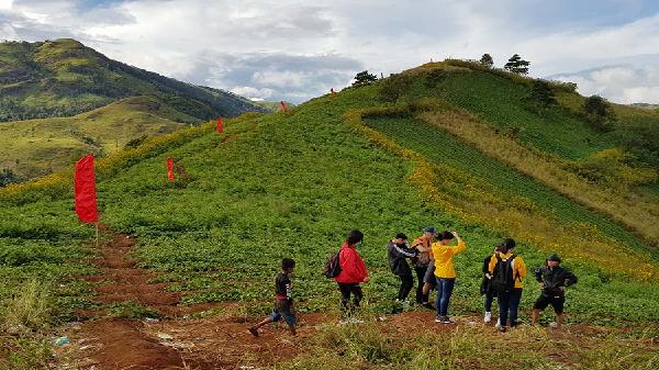 Đến lễ hội Hoa Dã quỳ-núi lửa Chư Đăng Ya được hỗ trợ Wifi