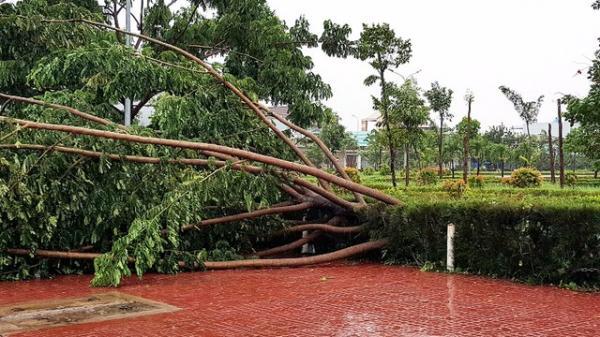 Gia Lai xin hỗ trợ hơn 76 tỷ đồng khắc phục hậu quả bão số 12