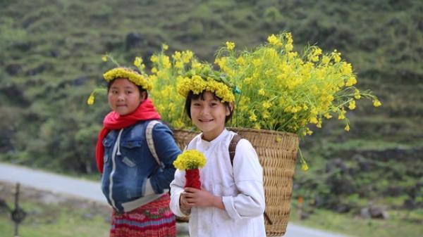 """Tháng 3 này, hãy về với Hà Giang để chiêm ngưỡng sắc """"hoa nở trên đá"""" có 1-0-2 đẹp đến mê mẩn lòng người"""