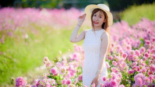 Ngay gần Cần Thơ có vườn hoa khổng lồ đủ màu sắc làm say lòng du khách