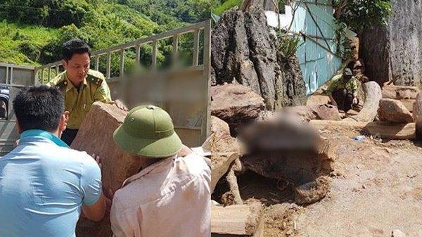 Công an choáng ngợp bên trong ngôi nhà của trùm ma túy khét tiếng Nguyễn Thanh Tuân: Một pháo đài!