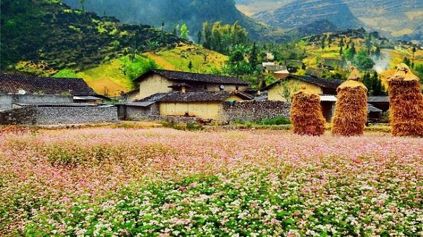 6 địa điểm tuyệt đẹp bạn không thể bỏ qua khi đến Hà Giang vào tháng 8
