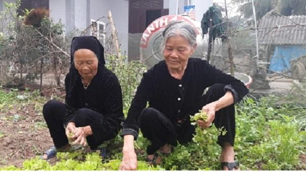 Lạ: Chuyện cổ tích giữa đời thường của hai người phụ nữ sống chung chồng suốt nửa thế kỷ