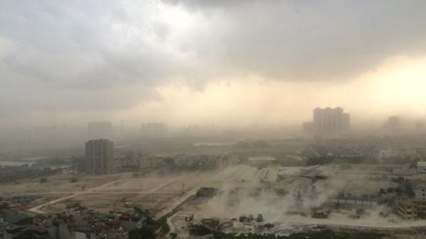 CẢNH BÁO: Mưa lớn bao trùm Vĩnh Long và các tỉnh trong 3 ngày tới nguy cơ giông lốc mạnh và gió xoáy