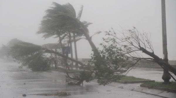 Xuất hiện áp thấp nhiệt đới liên tục đổi hướng đi phía bắc
