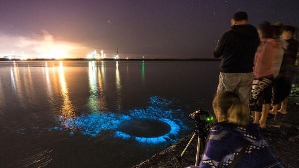 CHUYỆN LẠ: Biển phát sáng xanh lung linh trong đêm tối vì nắng nóng kỷ lục