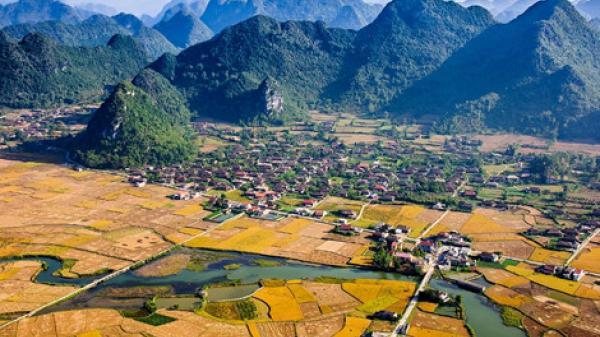 Lạng Sơn: Bỏ túi kinh nghiệm săn mùa lúa chín tuyệt đẹp ở Bắc Sơn