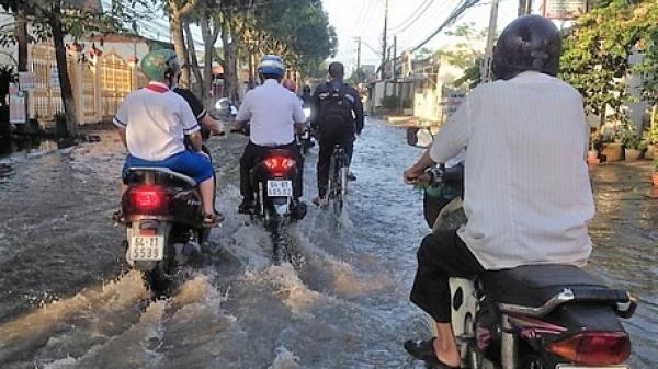 Vĩnh Long: Triều cường dâng cao, nhiều tuyến đường ngập sâu trong biển nước