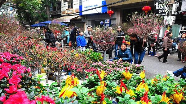 TP Hải Dương mở 3 chợ hoa xuân dịp Tết Mậu Tuất
