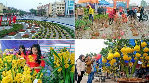 Hải Dương: Tấp nập chợ hoa xuân, không khí đón Tết tràn ngập mọi nơi