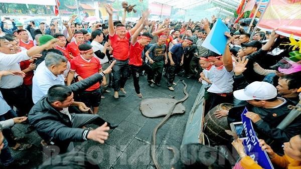 Liên hoan pháo đất tại Lễ hội mùa xuân Côn Sơn – Kiếp Bạc