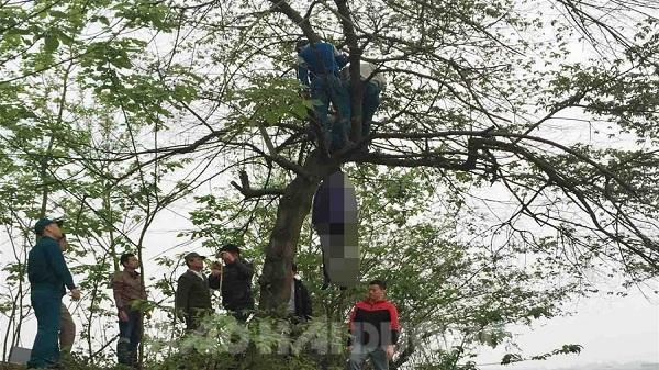 Hải Dương: Bàng hoàng phát hiện người phụ nữ treo cổ tự tử ở bến đò Hàn