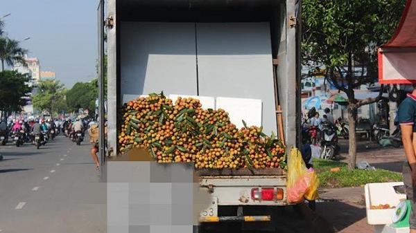 """4 loại quả Việt vào vụ giá """"mềm"""" hút khách"""