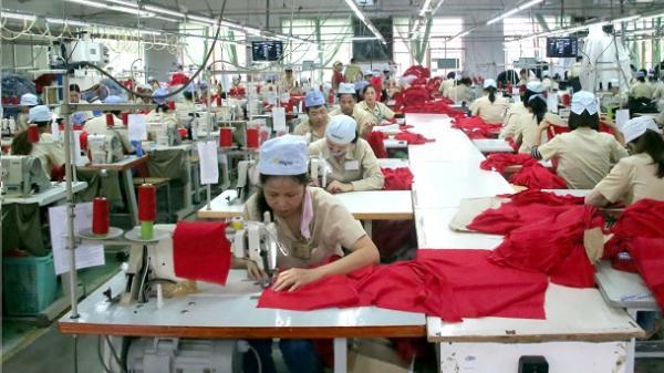 Hải Phòng tạo việc làm cho hơn 54 nghìn lượt lao động
