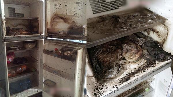 Thanh niên về quê ăn Tết cả tháng, vừa lên phòng trọ phát hiện cảnh tượng chết khiếp trong tủ lạnh