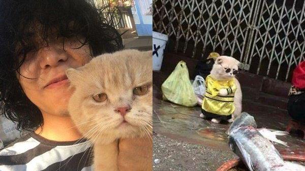 """Những hình ảnh độc quyền và """"chất chơi"""" của """"con sen"""" bí ẩn, làm nên sự nổi tiếng của chú mèo Chó ở Hải Phòng"""