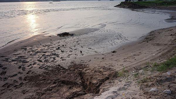 Hà Nội: Truy tìm tung tích người phụ nữ có thai tử vong bất thường ở bãi sông Hồng