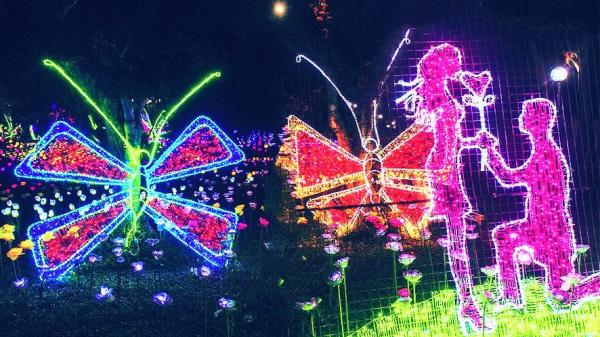 Cơ hội sống ảo siêu chất ở Đà Nẵng: Lễ hội trình chiếu ánh sáng với hàng triệu bóng đèn LED tại phố đi bộ mới khai trương