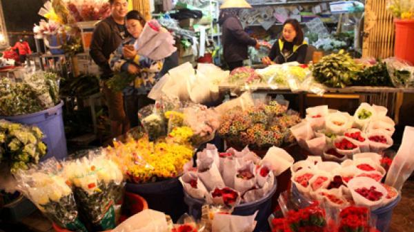 Hương sắc chợ hoa đêm Hạ Lũng - Nét đẹp rất riêng ở chợ đầu mối lớn nhất Hải Phòng