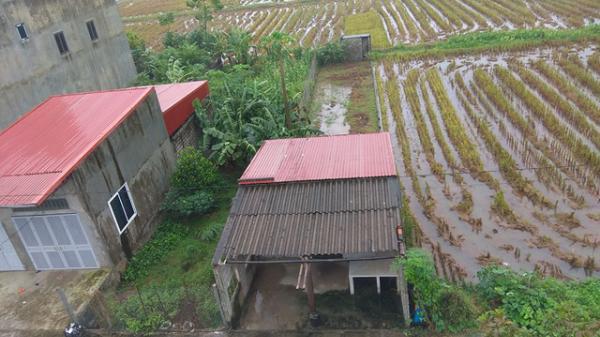 """""""Về quê nuôi cá và trồng rau"""", giấc mơ xa vời với người trẻ khi giá đất ở quê đắt ngang ngửa Hà Nội"""