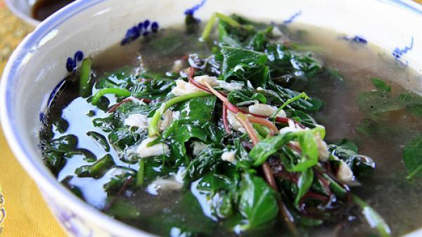 Loại rau quý hơn nhân sâm được nhiều nơi ưa chuộng nhưng Việt Nam lại thờ ơ, ném bỏ