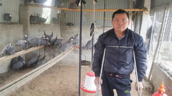 Hà Nam: Vượt lên bệnh tật, nuôi gà sao lãi hàng trăm triệu đồng mỗi năm